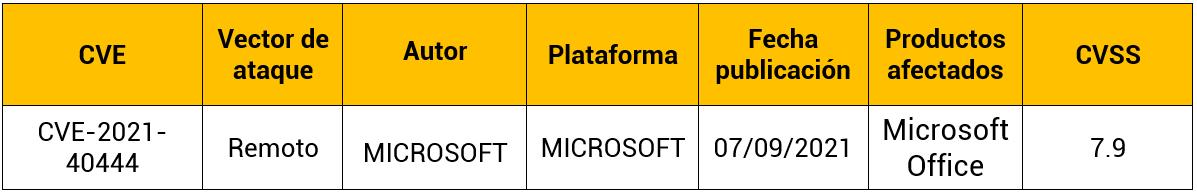 Vulnerabilidad de día Cero Microsoft Office