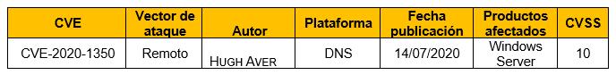 Vulnerabilidad en el servidor DNS de Windows