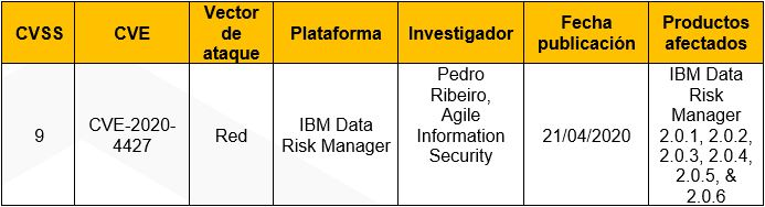 Múltiples vulnerabilidades en IBM Data Risk Manager